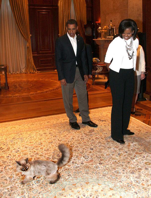 Дорофей и Обама